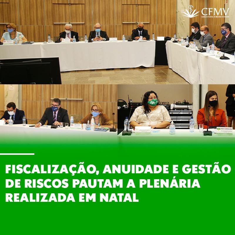 Fiscalização, anuidade e gestão de riscos pautam a plenária realizada em Natal