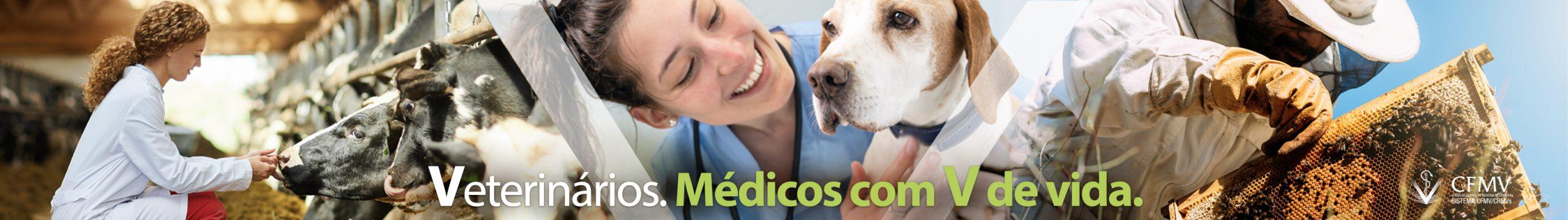 Banner Dia do Médico-Veterinário