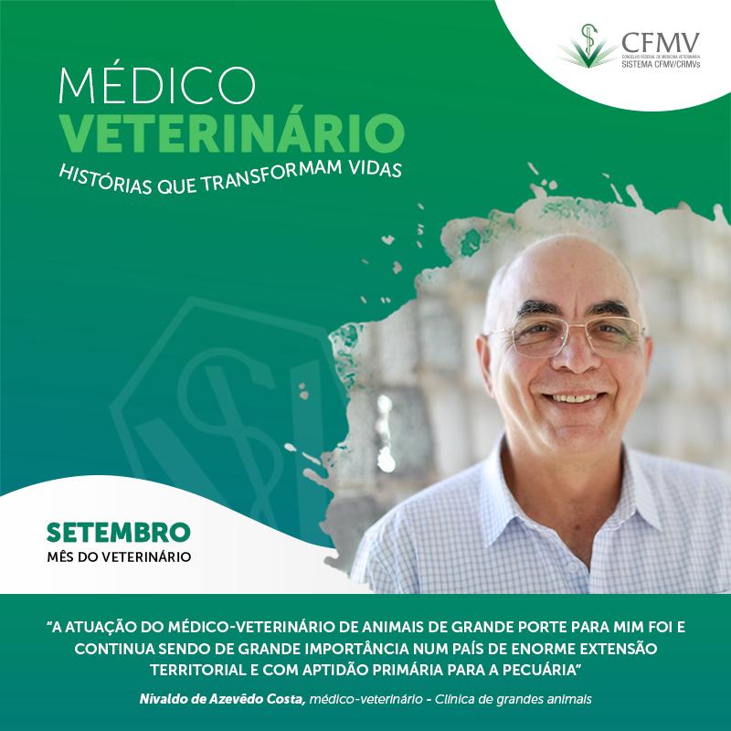 Médico-veterinário na clínica de grandes animais