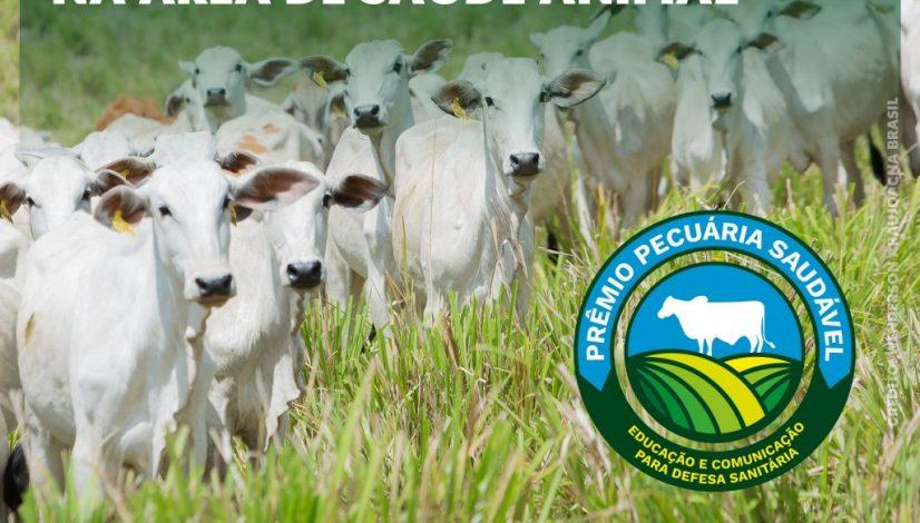 Prêmio Pecuária Saudável reconhece sete iniciativas na área de saúde animal