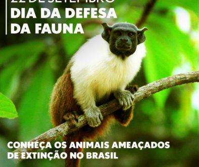 Dia da Defesa da Fauna 7