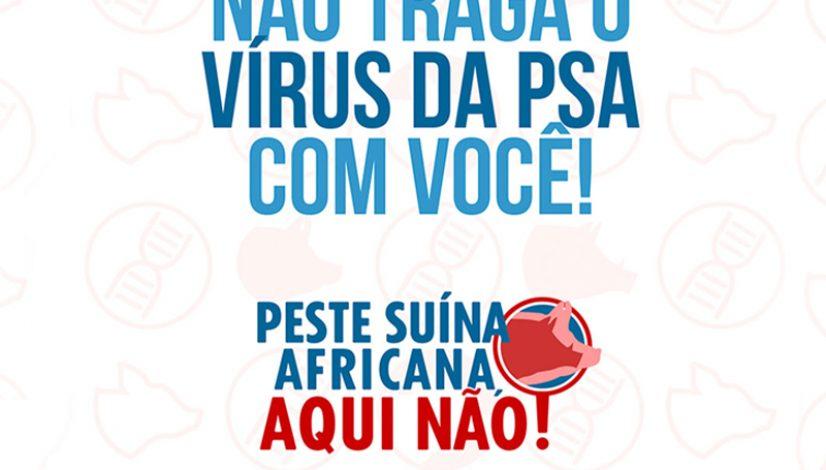 Ministério e associações promovem campanha para evitar que Peste Suína Africana atinja o Brasil