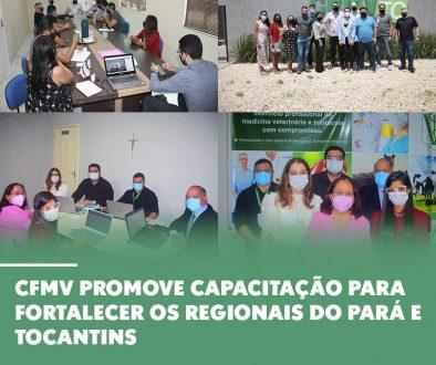 CFMV promove capacitação para fortalecer os regionais do Pará e Tocantins
